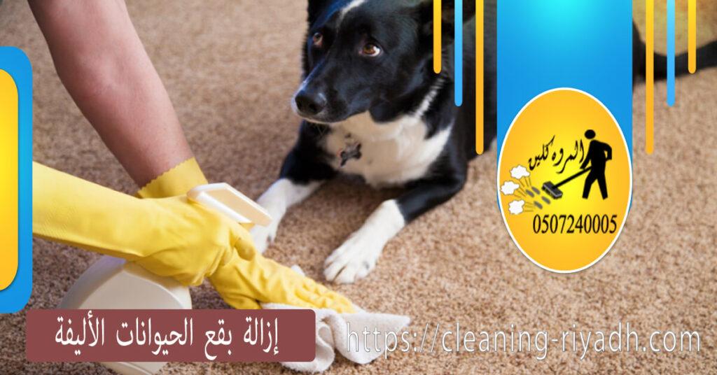 إزالة بقع الحيوانات الأليفة بسهوله